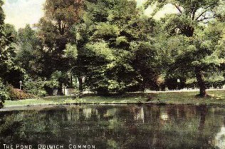 Dulwich Common Pond 1905 thanks to Southwark Library and Information Service