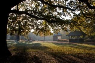Dulwich Park 1