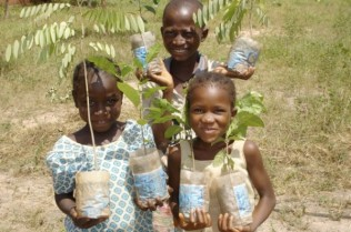 Tree Aid photo