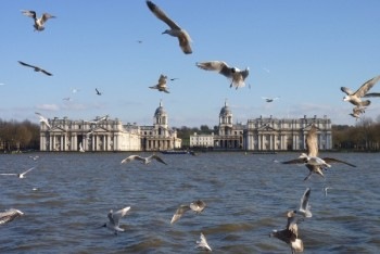 GreenwichCanalettoview_withbirds