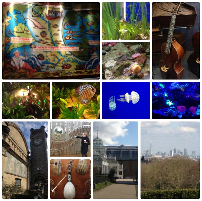 Horniman Museum Collage