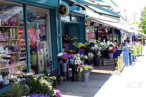 shops_300x200_12365