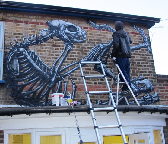 webRoa painting the skeleton of a cat. 1.5.13  (2)