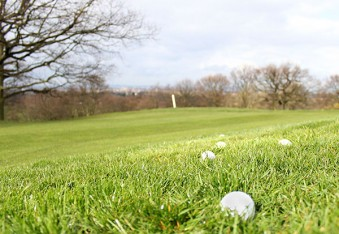 Dulwich and Sydenham Hill Golf Club 2