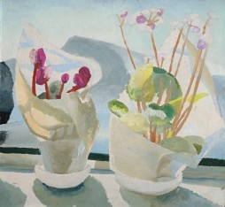 Winifred Nicholson, Cyclamen and Primula, c.1922-3, oil on paper / board, 50 x 55 cm, Kettle's Yard / © Kettle's Yard / Trustees of Winifred Nicholson