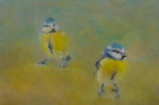 Blue Tits, Kent, 30.03.2014, Acrylic on Canvas, 20.4 x 20.4cm