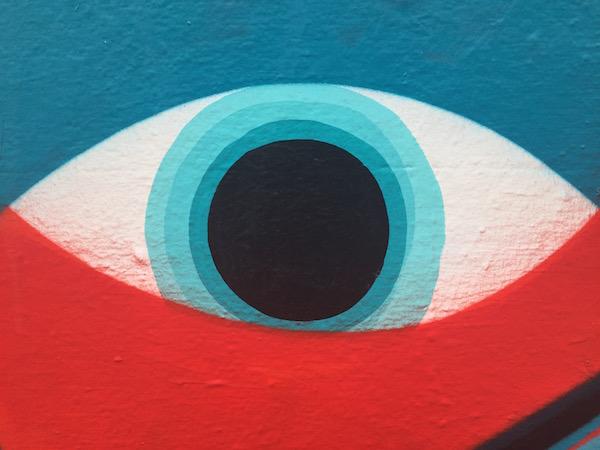 Eye detail, photo courtesy of Liz Vanderau